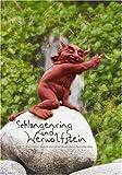 Schlangenring und Werwolfstein: Keltische Sagen aus dem deutschen Sprachraum