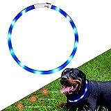 Hunde Leuchthalsband LED Halsband Hundehalsband Hunde, individuell kürzbar, USB aufladbar, Kabel im Lieferumfang enthalten