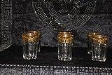 Bavary Medusa Elegante Whiskey, Tee Gläser Edel verarbeitet Hohe Qualität Neuheit Luxus