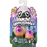 Hatchimals - 6043953 - Hatchimals Colleggtibles 2 Pack + Nest S4