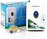 Ozon Generator wasser,600mg/h ozongerät Air Purifier Ozongenerator Gemüse-Sterilisator Ozon-Wasser Ozon Entgiftung Maschinen für Obst Gemüse