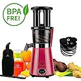 NUTRILOVERS Slow Juicer Entsafter mit 2 Einfüllöffnungen   Elektrische Obst & Gemüse Saftpresse   BPA-Frei   Geringe Drehzahl nur 60 U/min - 350 Watt   Glas-Trinkflasche & Reinigungsbürste