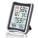 Digitales Thermo-Hygrometer, Diyife® Großer LCD Bildschirm Digital Thermometer, Digitaler Hygrothermograph, Temperatur und Feuchtigkeitsmonitor mit MIN / MAX Aufzeichnungen